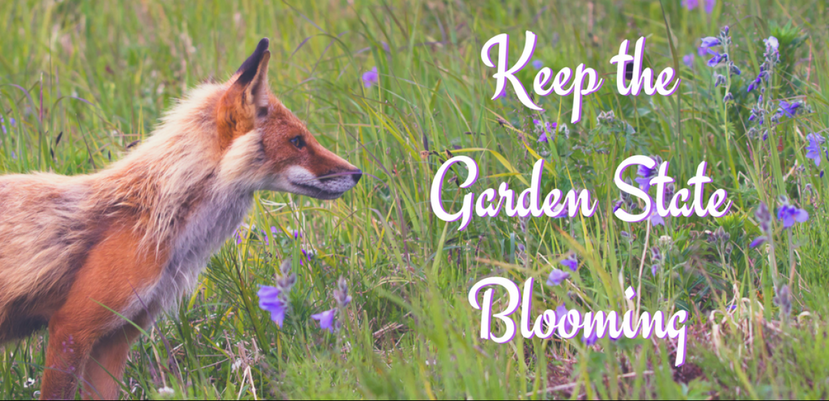 Keep the Garden State Blooming
